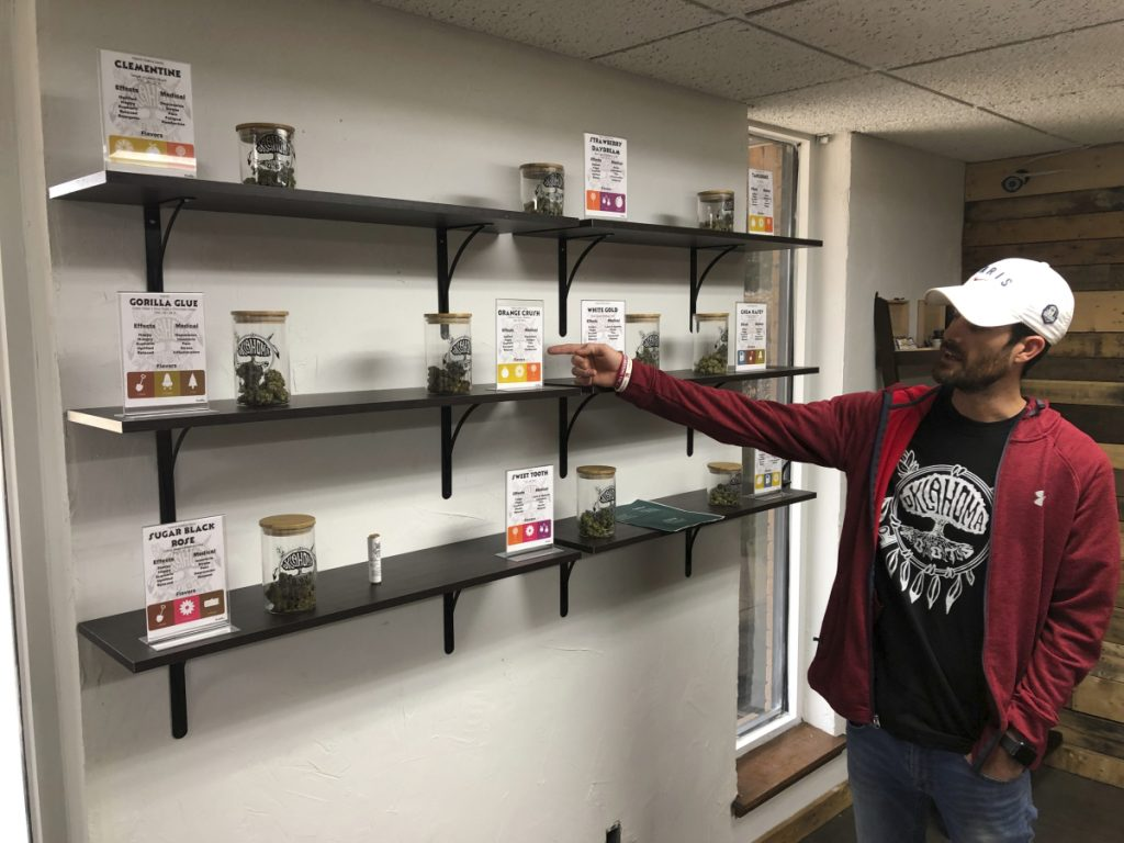 Medical marijuana dispensary owner Chance Gilbert displays some of the marijuana he's grown at the Oklahoma Roots dispensary in Shawnee, about 40 miles east of Oklahoma City.