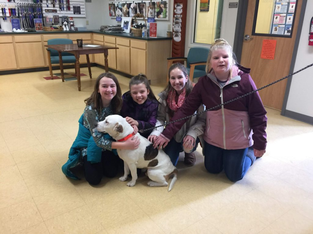 Benton Elementary sixth-grade students from left Alyssa Welch, Paige Goodwin, Meara Flood, and Abigail Taylor recently delivered $2,839.04 to the Humane Society Waterville Area. The funds were raised through a Cause for Paws fundraiser.