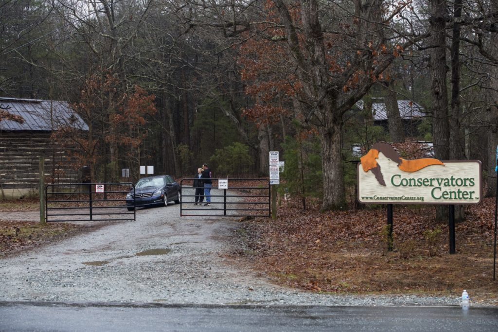 It was unclear Monday how the lion that killed Alexandra Black, 22, at the Conservators Center in Burlington, N.C., escaped and whether it got out of the enclosure the recent Indiana University graduate was cleaning.