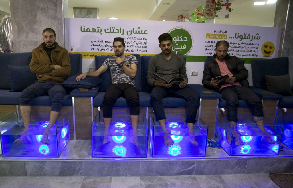 Palestinians soak their feet in a tank stocked with Garra rufa fish at a Gaza City cafe. Fish feed off the tough, dead skin of the feet during 30-minute sessions.
