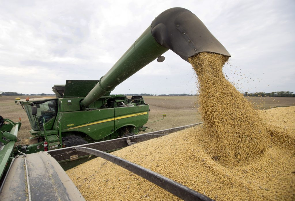Soybeans are harvested in Brownsburg, Indiana in September.