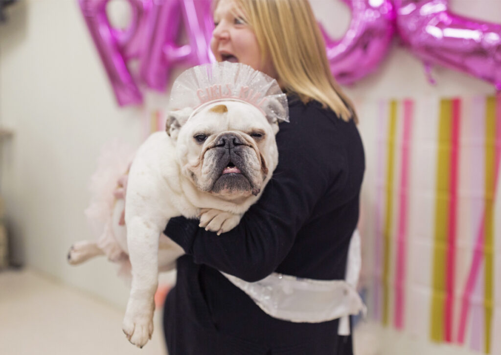 Paisley is wrapped in the arms of her owner, Barbara Dean, at a welcome home party for Paisley on Saturday.