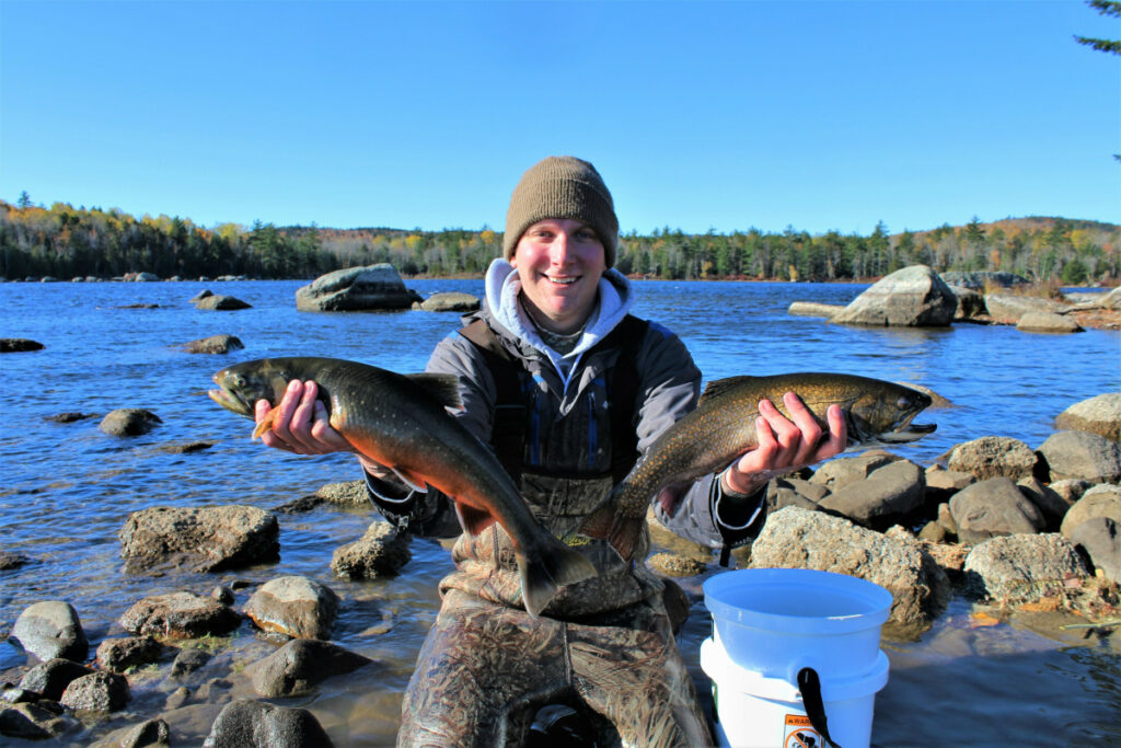 University of Maine graduate student Brad Erdman holds an Artic char, left, and a brook trout, right, at Floods Pond near Otis in October. Scientists in Maine are in the middle of a project to use DNA to help preserve Arctic char, which are at the southern end of their range in the state.