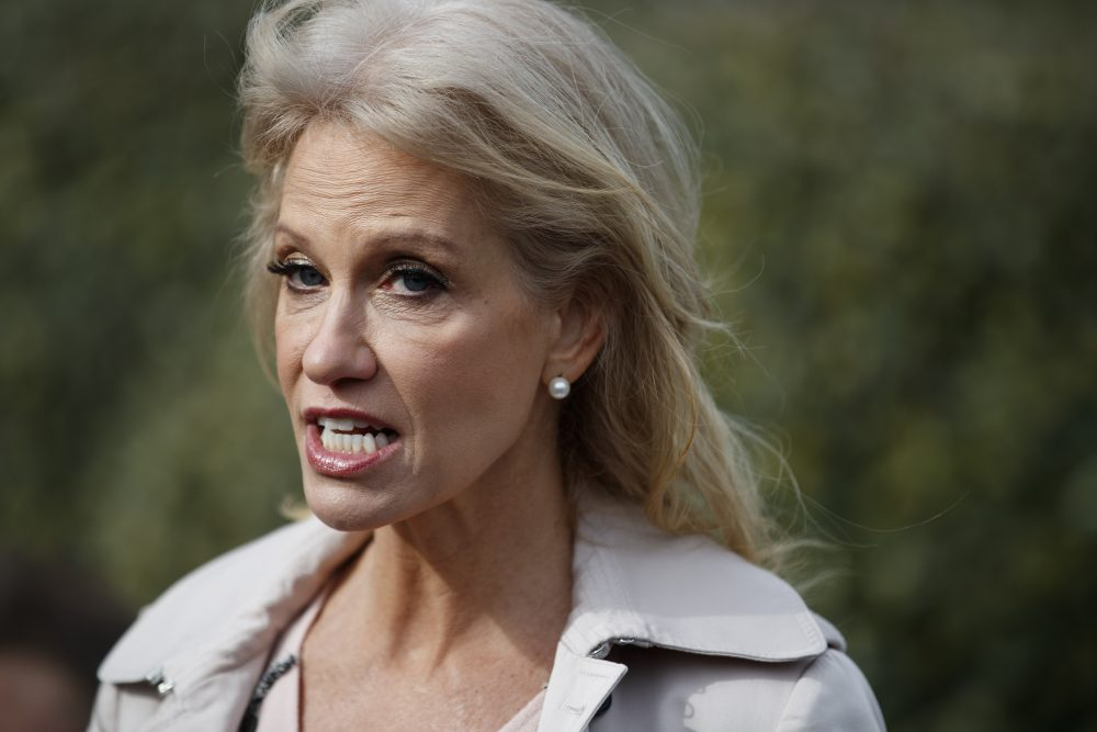 White House senior adviser Kellyanne Conway talks with reporters outside the White House in Washington on Jan.23, 2019. Conway says she was grabbed and shaken by a woman at a Mexican restaurant in Bethesda, Maryland, late last year.