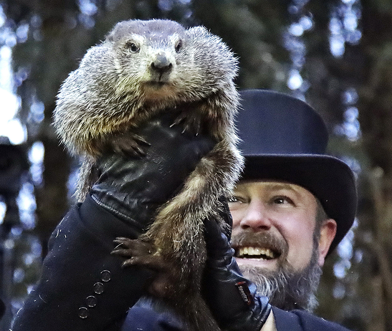Al Dereume holds Punxsutawney Phil, the weather prognosticating groundhog, during the 133rd celebration of Groundhog Day on Gobbler's Knob on Saturday.