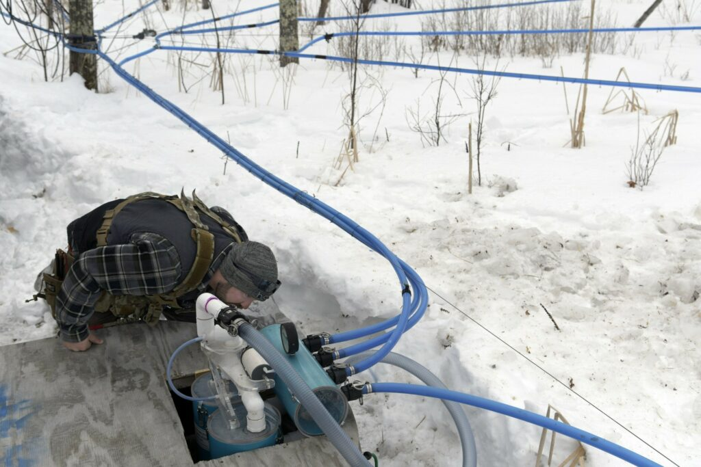 Tyler Jepson inspects a sap line Sunday at the Bacon Farm Maple Products sugar bush in Sidney.