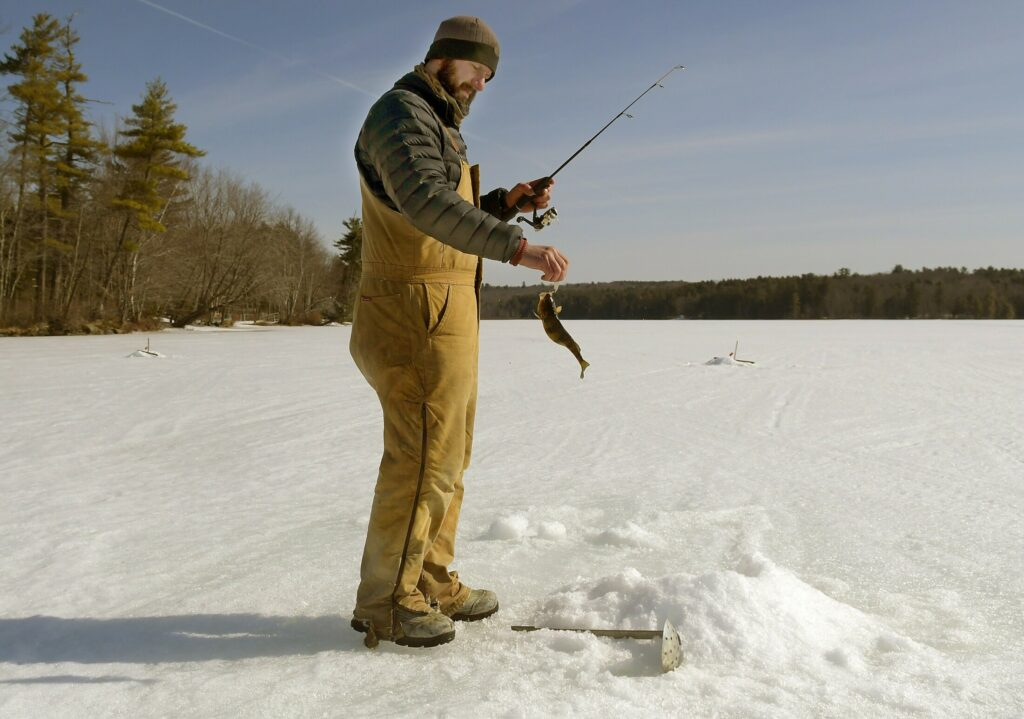 "Josh Galouch hauls perch through the ice on Thursday on Maranacook Lake near his home in Readfield. With the opening day of fresh water fishing on April 1, Galouch said ""it will be a while"" before he takes his children for a cast. He said he cut through two feet of ice set a trap."