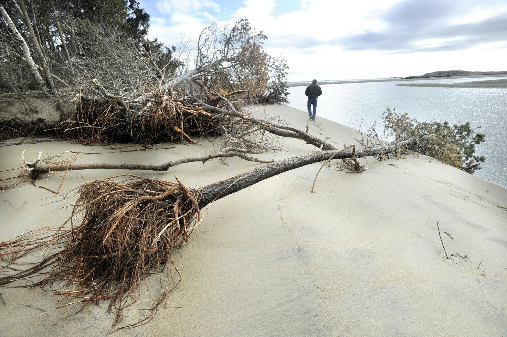 Popham Beach is littered with downed trees after a storm. (Press Herald file/John Ewing)