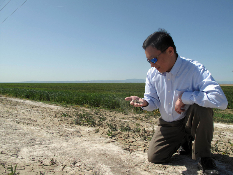 Daniel Kim looks at the salt-laden soil that forced Westlands Water District to retire land where he now wants to build a 30,000 acre solar farm near Lemoore, Calif.