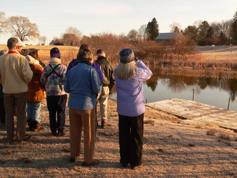 Bird-watchers pause with their binoculars at the edge of a small pond at Gilsland Farm in Falmouth. Downy woodpeckers, American tree sparrows, red-breasted merganser and a pair of American wigeon, among others, were spotted during the morning bird walk.