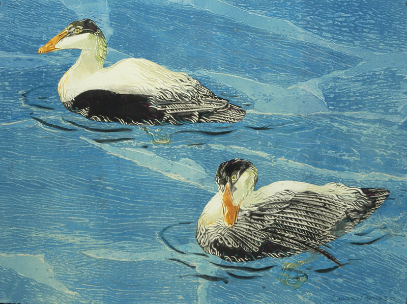 """""""Eiders on a Blue Sea II"""" by Susan Amons, 2008, monotype with pastel."""
