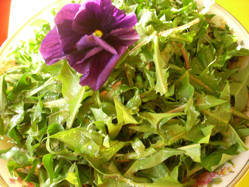Dandelion salad, topped by a pansy and a dressing with extra vinegar to balance the greens' bitterness, is a healthy spring choice.