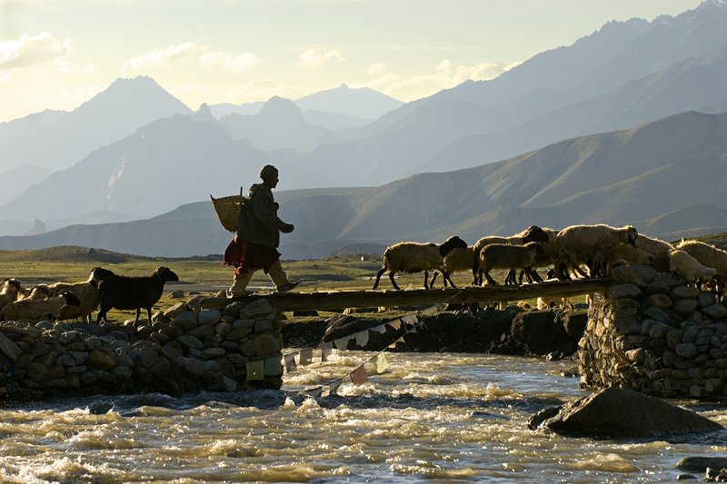 Ladakh Bridge, India, one of the photographs by Jim Daniels at Northeast Hearing and Speech in Portland