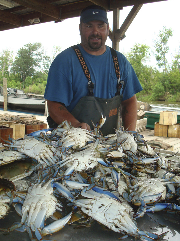 Kenny LeFebvre of Hopedale, La., packages blue crabs he hauled in before the fishing grounds were closed in the waters around St. Bernard Parish, La. LeFebvre worries how he will support his six children.