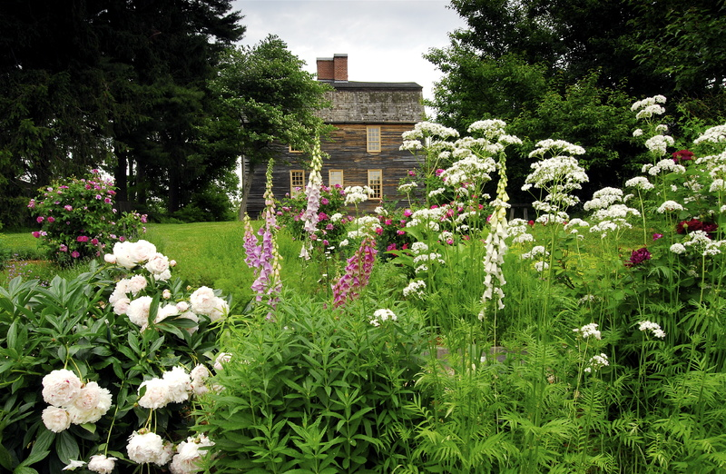Flowers are in bloom at the Tate House, where an herb sale will be held Saturday morning.