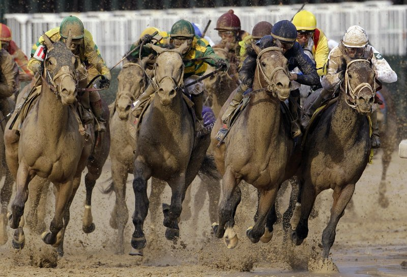 So which of these horses is Calvin Borel riding? The one on the rail, of course. That's where he kept Super Saver in the Kentucky Derby, for his third Derby victory in the last four years. Super Saver will be in the Preakness next Saturday.