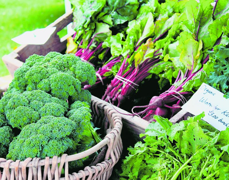 Growing many of these vegetables requires just a little planning and direct seeding in the springtime garden.