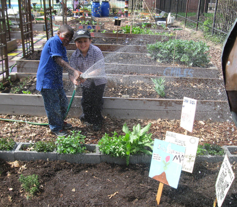 Professional gardeners say the sooner children begin sprouting their green thumbs, the better, because gardening fosters independence and responsibility.