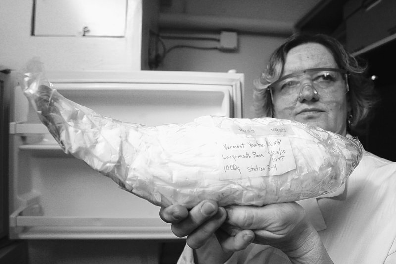 Cecylia Karch, radiochemistry program coordinator at the Vermont Health Department lab in Burlington, holds a fish caught near the Vermont Yankee nuclear plant. The fish tested positive for strontium-90, and some people have wondered if the plant is responsible.