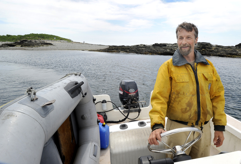 Scott Hall, Audubon research coordinator on Stratton Island, says that of the 14 nesting seabird islands in the Gulf of Maine managed by biologists, Stratton is the only one open to the public.