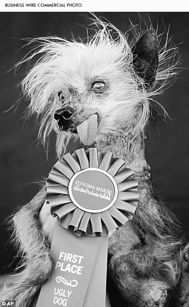 """Miss Ellie, a small, bug-eyed Chinese Crested Hairless dog whose pimples and lolling tongue helped her win Animal Planet's """"World's Ugliest Dog"""" contest in 2009, has died at age 17 after a career in resort show business in the Smoky Mountains."""