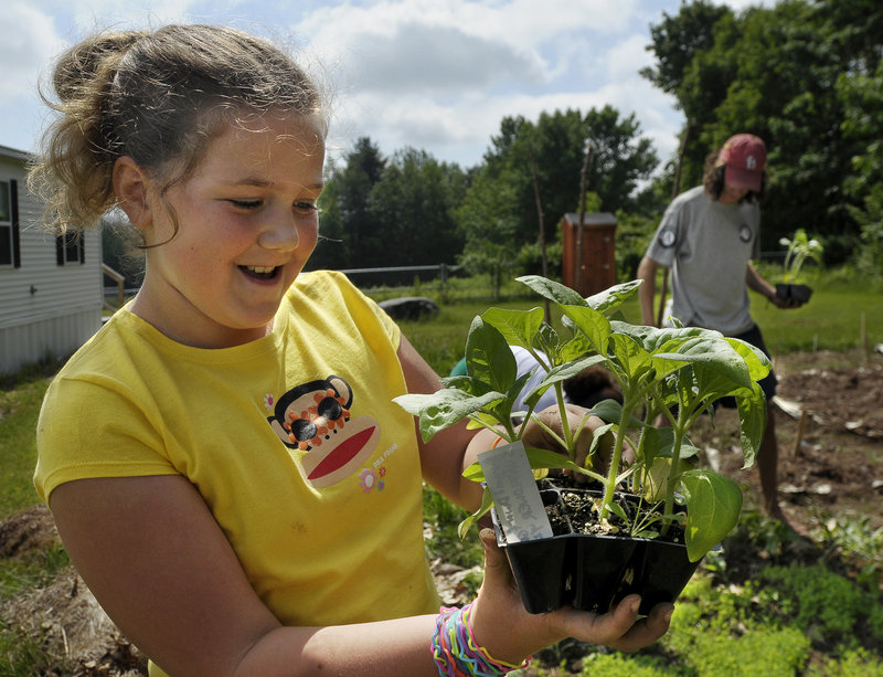 Lauryn Silva, 9, prepares to plant a sunflower seedling in the garden behind the George E. Jack Elementary School in Standish.