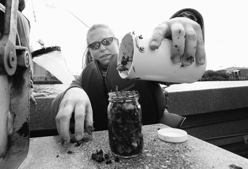 """Masura empties material from her collection filter, noting its contents of woody debris, grass clippings, and tiny, colorful specks of plastic foam and other plastic items that were skimmed from the Thea Foss Waterway. She'll bottle the material to be analyzed back at the university lab. """"We're trying to answer the question of how much,"""" she said."""