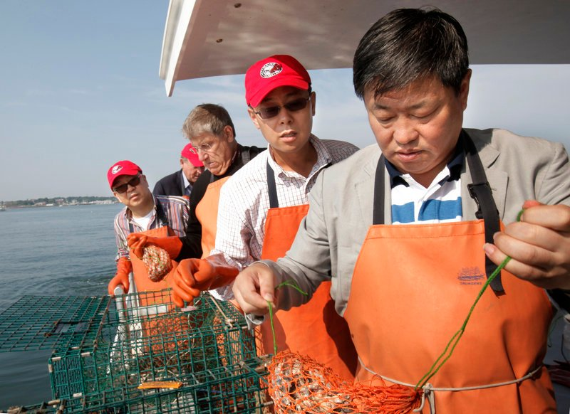 """Ning Gaoning, right, pulls a bait bag from a lobster trap Friday aboard the Lucky Catch in Portland Harbor. With Ning are, from left, Fang Fenglei, Eliot Cutler and Guy Cui. Cutler, an independent candidate for governor, says he wants the Chinese business leaders """"to understand Maine lobster is better than Australia and New Zealand lobster"""" and that """"we produce enough to export to China."""""""
