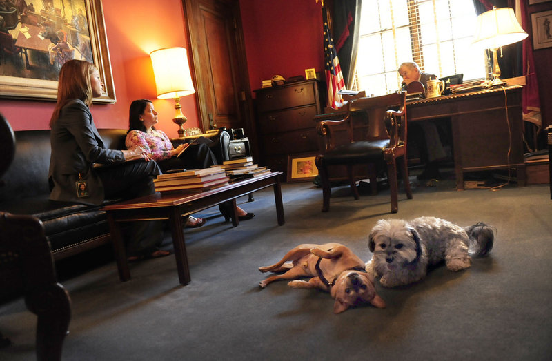 """Pooley, left, and Tiger sit in on a meeting with Sen. Christopher """"Kit"""" Bond, R-Mo., on Capitol Hill. Bond owns Tiger, a Havanese named for the University of Missouri mascot, who likes to lie under Bond's desk and chew Kansas Jayhawks toys."""