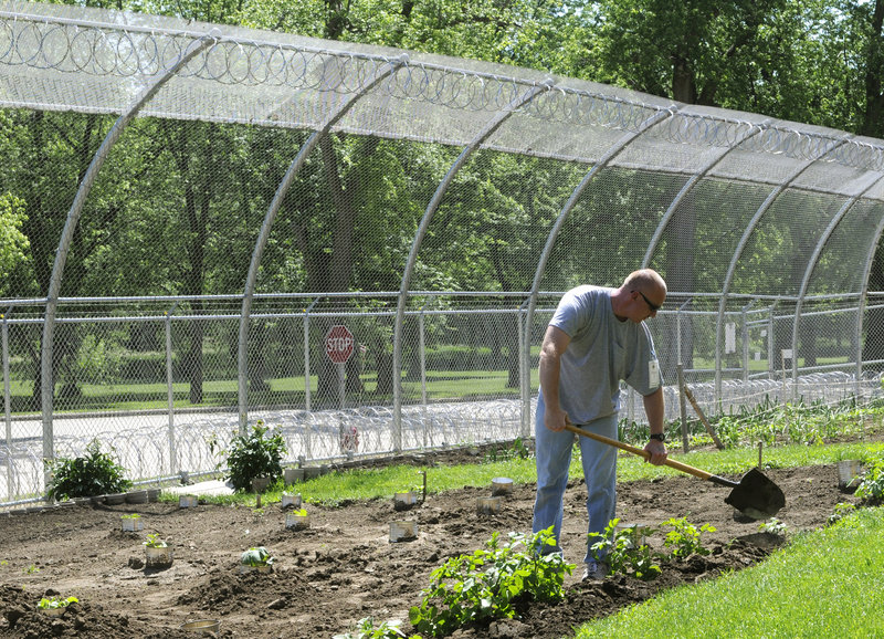Donald DeMoss Jr., a patient at the Civil Commitment Unit for Sexual Offenders, tends to the garden on the grounds of the Cherokee Mental Health Institute in Cherokee, Iowa.