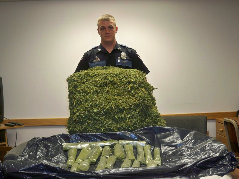 Bridgton police officer T.J. Reese is seen with marijuana seized in a raid on a Bridgton home. Officials seized 18 pounds of marijuana and 145 pot plants.