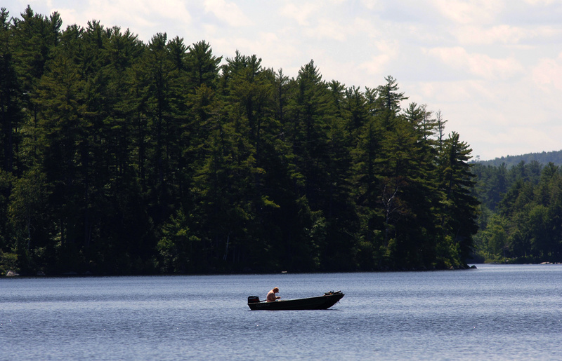 This is Long Pond in Belgrade Lakes, where the Ken Allen was wading for bass one night. Then along came a northern water snake and –¦ well, he never has forgotten what happened.