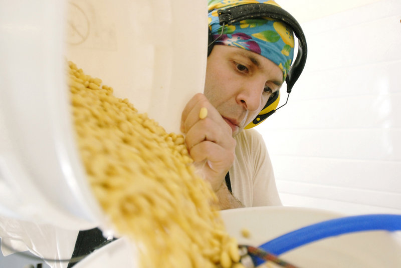 Jeff Wolovitz pours soybeans into a grinder. He soaks the soybeans overnight the day before he makes tofu. The soaked soybeans are then ground up into a puree and heated with water.