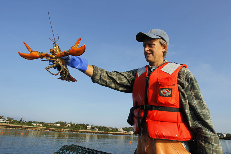 Hussey holds a lobster caught off Matinicus Island.