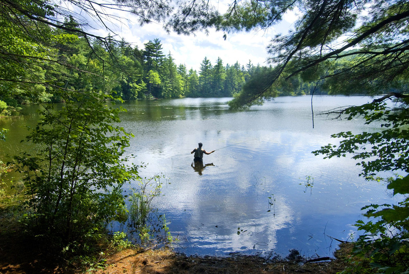 This photo by John Ewing of Spencer Garrett of Portland fly casting near his campsite on Crocker Pond in Albany Township won first place in the feature photo category of the New England Associated Press News Executives Association contest.