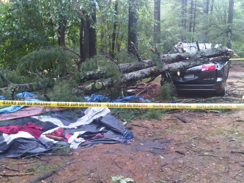 Trees rest on a car after a two-minute storm Monday evening roared through the Flat Rock Bridge Family Resort in Lebanon.