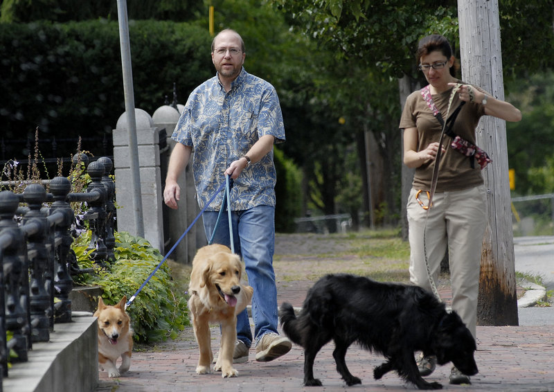 Reporter Ray Routhier walks some charges with dog walker Melissa Letourneau of Portland's Paws in Portland.