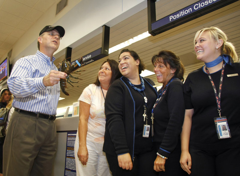 David Barger, president and chief executive officer of JetBlue Airways, with airport customer service representatives, from left, Missy Mokarzel, Ana Nieves, Joan Vendola and Nicole Bormet, shows off one of the lobsters he was given by Portland employees Thursday.