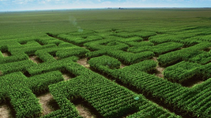 The makers of high fructose corn syrup want to change its image with a new name: corn sugar. The Corn Refiners Association, which featured a corn maze in a recent TV ad, has asked the FDA to approve the alternative name.