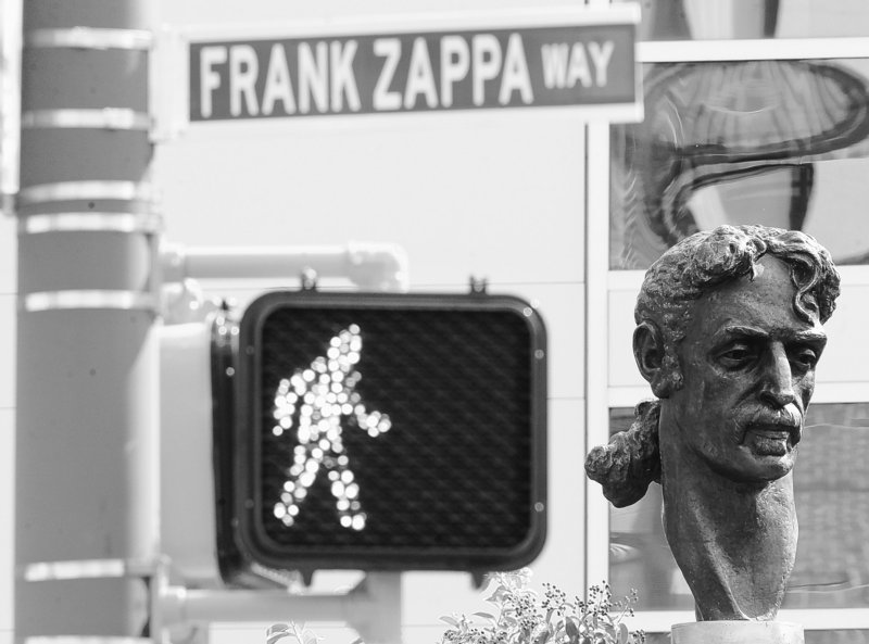A bust of musician Frank Zappa went up Sunday in Baltimore, the city where the acclaimed star was born.