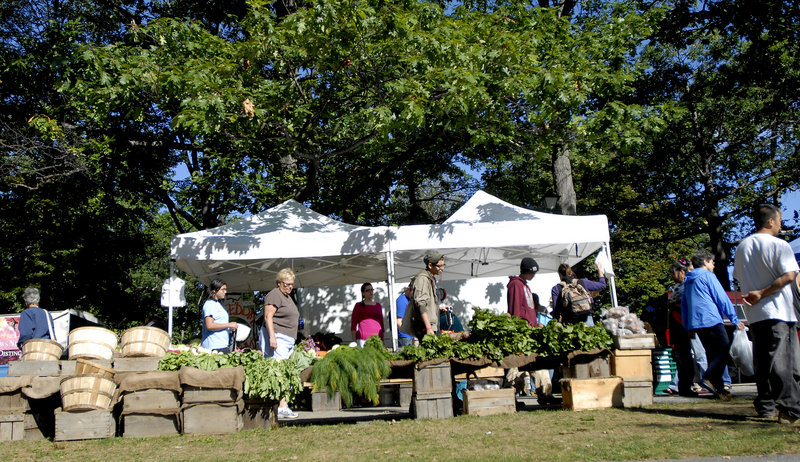The steady stream of customers at the farmers' market at Deering Oaks in Portland, great news for the growers, is raising concerns about overcrowding and a shortage of parking.