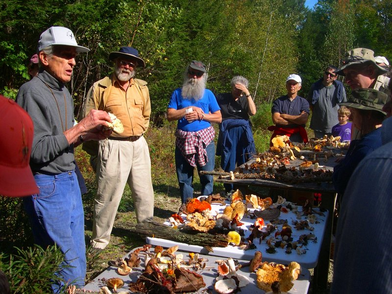FIND OUT ABOUT FUNGI: A mushroom walk at 2 p.m. today in Bowdoinham, hosted by Friends of Merrymeeting Bay, will teach participants how to identify various mushrooms. Michaeline Mulvey, an experienced local mycologist, will lead the walk at the head of tide on the Abagadasset River at Carding Machine Road, off Route 24. Participants should register today by calling Misty Gorski at 737-8508 or by e-mailing fomb@suscom-maine.net.