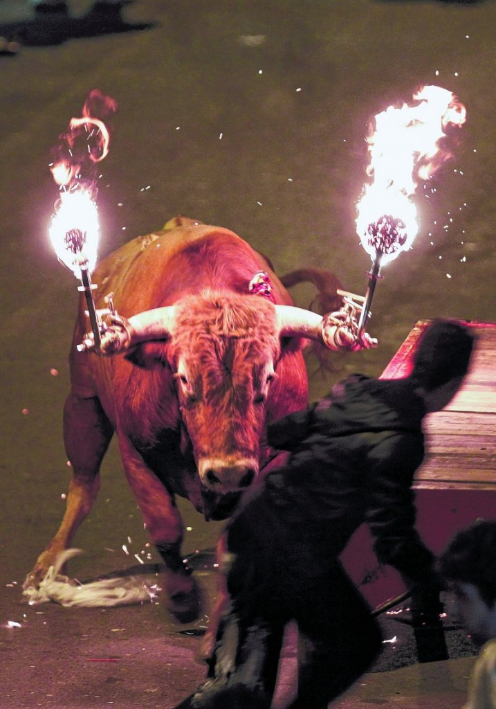 A reveler runs from a bull with flaming horns during a festivity in Gilet, Spain, last January. Lawmakers who outlawed bullfighting this summer in Spain's Catalonia region approved a bill Wednesday that effectively endorses other traditions such as letting bulls chase human daredevils by seaside marinas and plunge into the water.