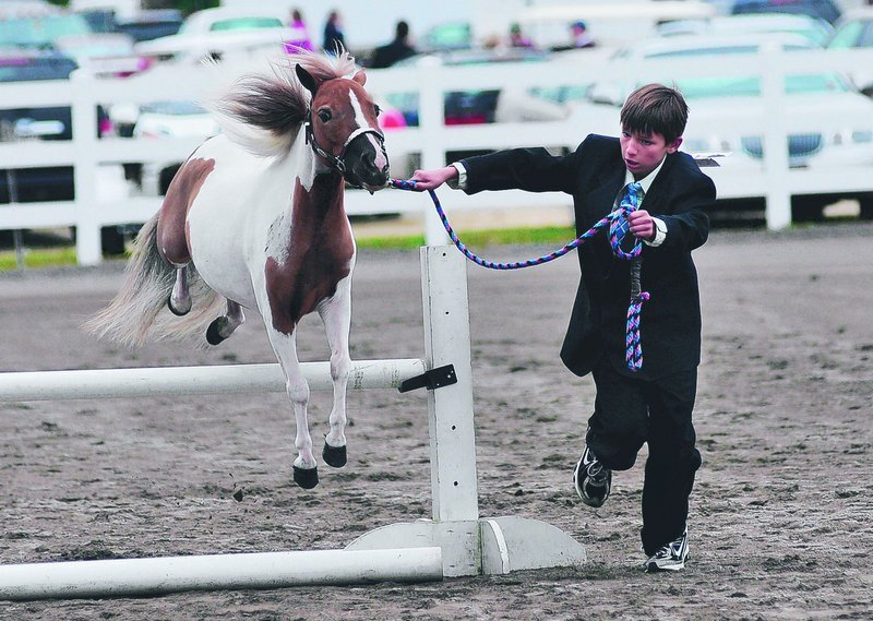 Devin Maheu 9, of Bucksport leads his miniature horse Kitty over a jump during a competition at the Cumberland Fair on Sunday.