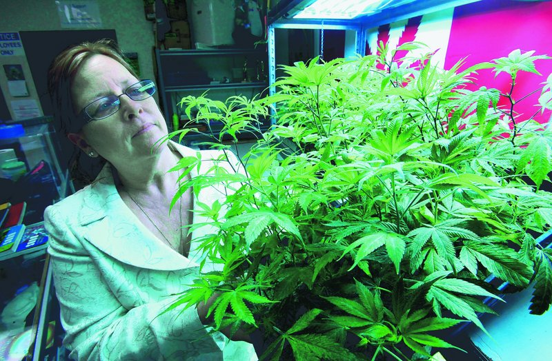 Lanette Davies, co-owner of Canna Care, a medical marijuana shop, looks at some young plants in Sacramento, Calif. She opposes a proposal to legalize the drug for recreational use, claiming it contains inadequate protections for medical marijuana patients.