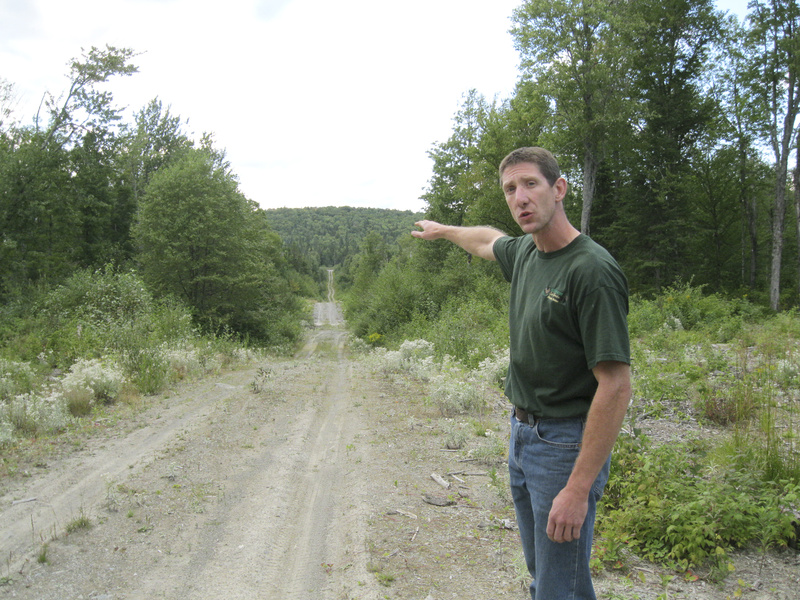 Maine hunting guide Sean Lizotte points to a logging road recently built in the forest near his sporting camps in Allagash. He said the road was built near a deer wintering yard and along a deer path, and will make whitetail deer in the areas more vulnerable to coyotes.