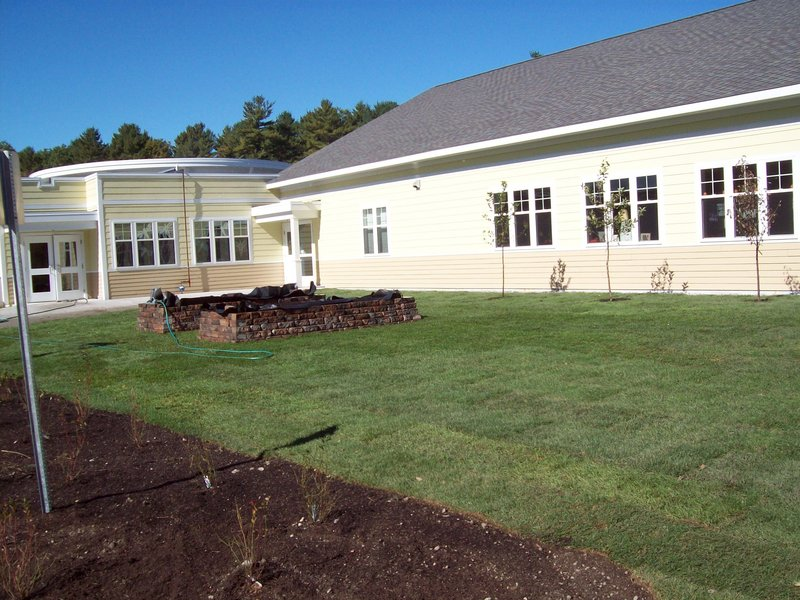 A day after the work, the raised beds and fruit trees grace the lawn.