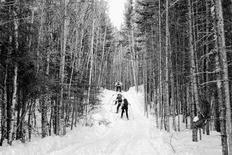 Skiers make their way up a hill on a the trail that is part of a trail-hut system from Bethel to Moosehead Lake.