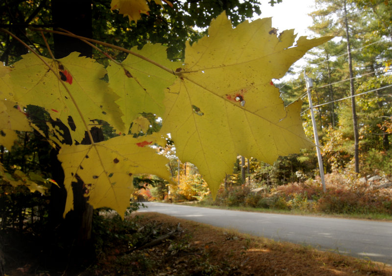 Some say Witchtrot Road in York got its name because witches walked it to their deaths around the time of the witch trials in Salem, Mass. One problem: There were no witch trials in York County and no witches were killed there, says Scott Stevens of the Museums of Old York. Another theory posits that it was the road George Burroughs took when he was sent to Salem to face trial and subsequently hanged.