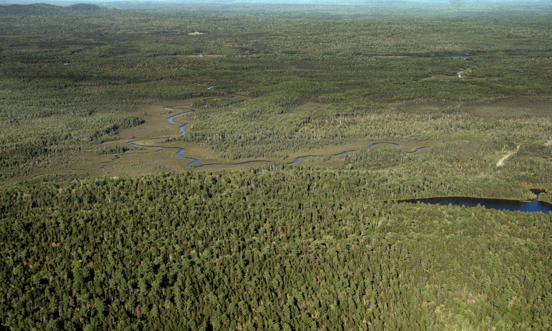An aerial view of Maine's North Woods near the Allagash Wilderness Waterway.